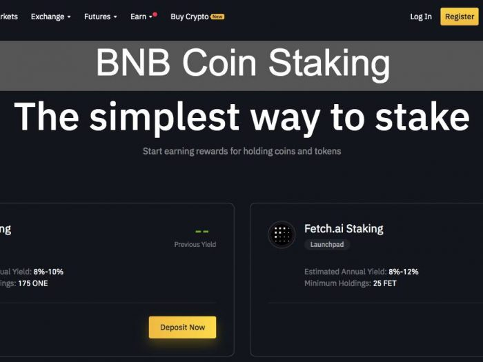 BNB Coin Staking
